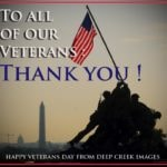 Veterans Day Tribute photos
