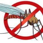 Local sample tests positive for West Nile Virus